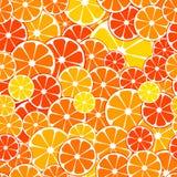 Vector naadloze patroonachtergrond de gesneden helften van citrusvruchtenfrui vector illustratie