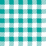Vector naadloze textuur met vichy kooiornament Groene en witte kooien royalty-vrije illustratie