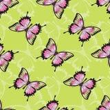 Vector naadloze textuur met vlinders. Stock Afbeeldingen