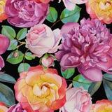 Vector nahtloses mit Blumenmuster mit Aquarellrosen und -pfingstrosen Stockfotos