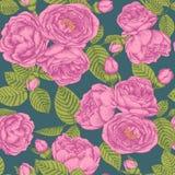 Vector nahtloses mit Blumenmuster mit Blumensträußen von Hand gezeichneten rosa Rosen Lizenzfreies Stockfoto