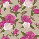 Vector nahtloses mit Blumenmuster mit Blumensträußen von Hand gezeichneten rosa und weißen Pfingstrosen Stockfotos