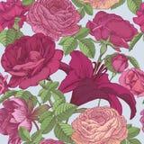 Vector nahtloses mit Blumenmuster mit der Pfingstrosen, Roter und rosa den Rosen der Lilien, Stockbilder