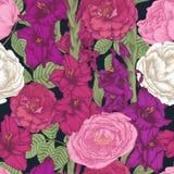 Vector nahtloses mit Blumenmuster mit Hand gezeichneten Gladioleblumen und -rosen Lizenzfreie Stockbilder