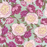 Vector nahtloses mit Blumenmuster mit Hand gezeichneten rosa und weißen Pfingstrosen Lizenzfreie Stockfotos