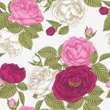 Vector nahtloses mit Blumenmuster mit Hand gezeichneten Rosen Stockfotografie