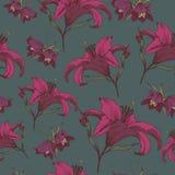 Vector nahtloses mit Blumenmuster mit Lilien und Fritillaria Stockfoto