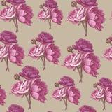 Vector nahtloses mit Blumenmuster mit persischen Butterblumeen und Pfingstrosen Lizenzfreie Stockfotografie