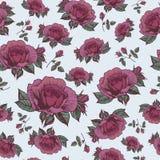Vector nahtloses mit Blumenmuster mit Rosen in der Weinleseart Stockfotos