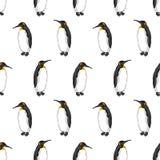 Vector nahtloses Muster des Kaiserpinguins auf weißem Hintergrund Lizenzfreie Stockfotos