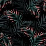Vector nahtloses tropisches Muster, klares tropisches Laub, mit Palmblättern stock abbildung