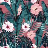 Vector nahtloses tropisches Muster, klares tropisches Laub, mit Palme monstera, Bananenblättern und Hibiscusblumen lizenzfreie abbildung
