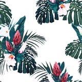 Vector nahtloses tropisches Muster, klares tropisches Laub, mit Palme monstera, Bananenblättern und Hibiscusblumen stock abbildung