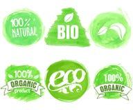 Vector natürliches, das biologische Lebensmittel, Bio, eco Aufkleber auf weißem Hintergrund Stockbilder