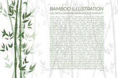Vector Natural Bamboo Background, Horizontal Green Colorful Banner, Text Sample. stock illustration
