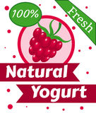 Vector natural del yogur de la baya Fotografía de archivo