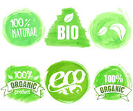 Vector natural, organic food, bio, eco labels on white background Stock Images