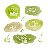 Vector natural organic food label. Farm products eco design watercolor style.  Stock Image