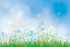 Vector nature background with  blue flowers. Royalty Free Stock Photo
