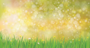 Vector  nature  background. Stock Photography