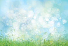 Vector  nature background. Royalty Free Stock Photo