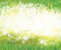 Vector  nature  background. Royalty Free Stock Photos