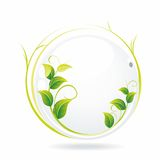 Vector nature background. An illustration of a white glass ball with wet leaves Royalty Free Illustration