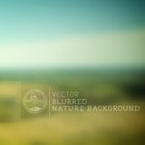 Vector Nature Blurry Background Stock Images