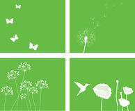 Vector nature set. Vector illustration of a nature set with butterflies, flowers, birds Royalty Free Stock Photography