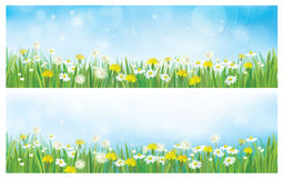 Vector nature  spring backgrounds. Royalty Free Stock Photos
