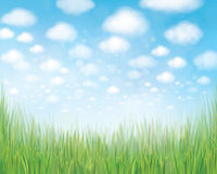 Vector  nature summer background. Royalty Free Stock Image