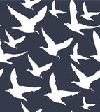Vector navy blue background with white seagulls Royalty Free Stock Images