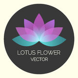 Vector Neon Lotus Flower Logo Illustration on Black Illustration. Vector Neon Lotus Flower Logo Illustration on Black Background vector illustration