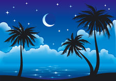Vector night coast. Night coast with palm-trees. EPS8 vector Royalty Free Stock Photos