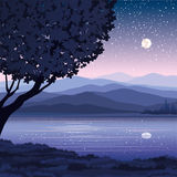 Vector night landscape Royalty Free Stock Photo