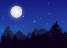 Vector night landscape with spruce forest, strarry sky and full moon. Stock Photos