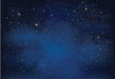 Vector night  sky. Stock Photography
