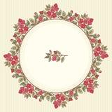 Vector o cartão do vintage com um ramalhete das flores da garatuja e o quadro para o texto no fundo listrado retro Imagens de Stock Royalty Free