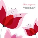 Vector o cartão floral cor-de-rosa Fotos de Stock Royalty Free