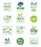 Vector o eco, moldes orgânicos, bio dos cartões do logotipo Saudáveis escritos à mão comem os ícones ajustados Vegetariano, alime ilustração royalty free