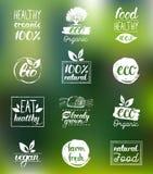 Vector o eco, moldes orgânicos, bio dos cartões do logotipo Saudáveis escritos à mão comem os ícones ajustados Vegetariano, alime ilustração stock