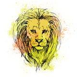 Vector o esboço pela pena de uma cabeça do leão em um fundo do colorido ilustração do vetor
