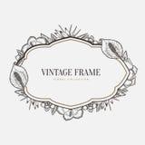 Vector o frame floral do vintage Gráfico retro do estilo ilustração do vetor