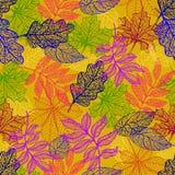 Vector o fundo com as folhas de outono vermelhas, alaranjadas, marrons e amarelas ilustração royalty free