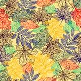 Vector o fundo com as folhas de outono vermelhas, alaranjadas, marrons e amarelas ilustração stock