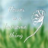 Vector o fundo e a flor branca, natureza borrada da paisagem Molde para o poster Imagem de Stock Royalty Free