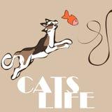 Vector o gato manchado estão jogando com os peixes do tecido da provocação ilustração royalty free