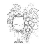 Vector o grupo de uva, das folhas ornamentado da uva e do copo de vinho no preto Imagem de Stock Royalty Free