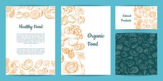 Vector o grupo tirado mão do cartão, do folheto, do inseto, do molde e do teste padrão das frutas e legumes ilustração do vetor