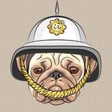 Vector o pug engraçado do cão dos desenhos animados no capacete britânico ilustração royalty free